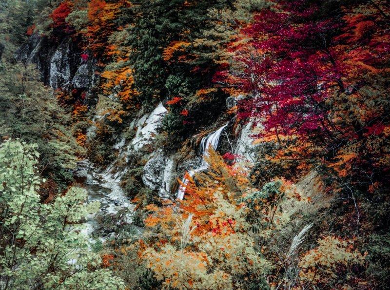 nakatsu river - fukushima ken